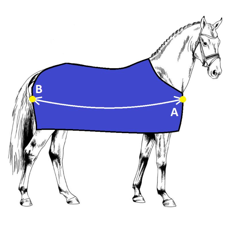 Measurement Charts - Ideal Equestrian