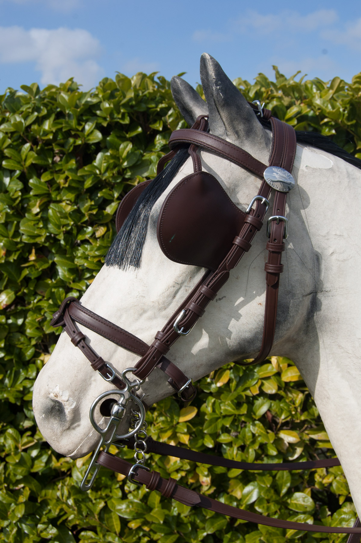 Eurotech Combi Bridle Ideal Equestrian